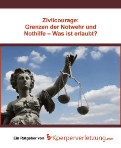 E-Book: Grenzen der Zivilcourage